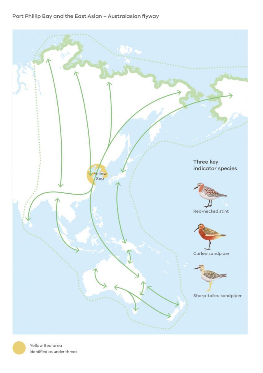 East Asian-Australasian Flyway