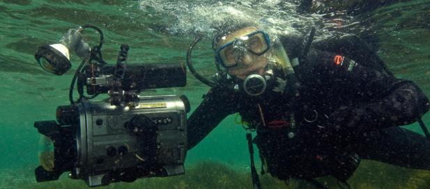 Mark Norman, marine scientist at Museum Victoria